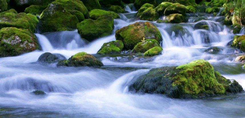 I nostri partner: Atena e Freebioenergy rivoluzionano il trattamento delle acque