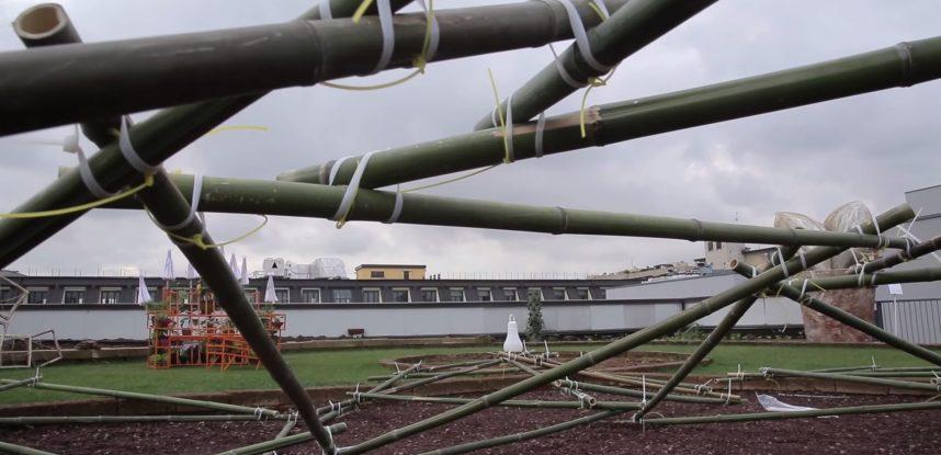 Workshop: Ripartire dal Bambù